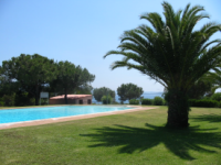 Location En Corse Les Couchants : La piscine
